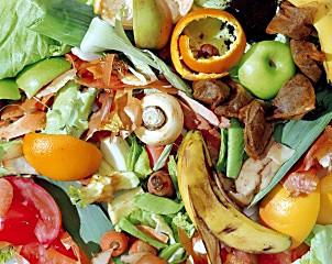 Composter :un geste écologique à votre portée