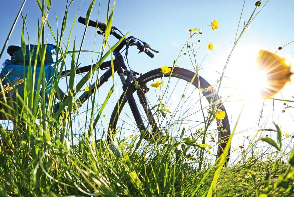 Apportez-nous vos pneus de vélo