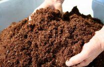 Formations sur le compostage domestique