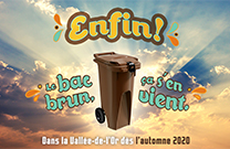 BACS BRUNS: ENFIN!